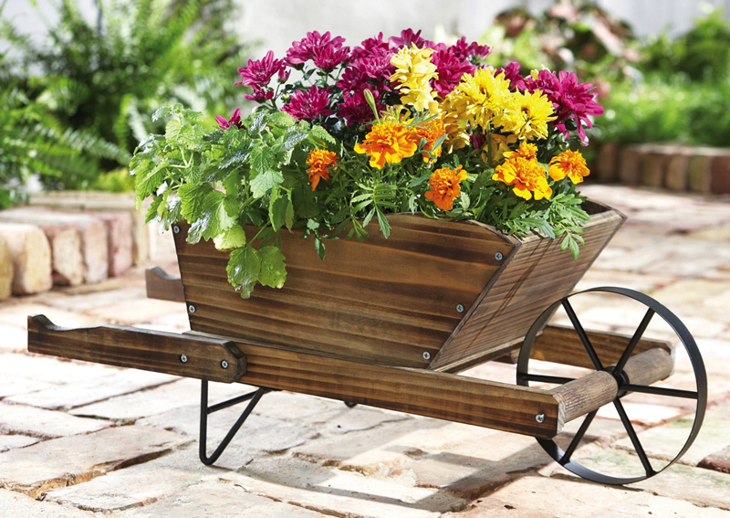 roaba cu flori 3