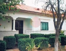 House For Sale Iepuresti,