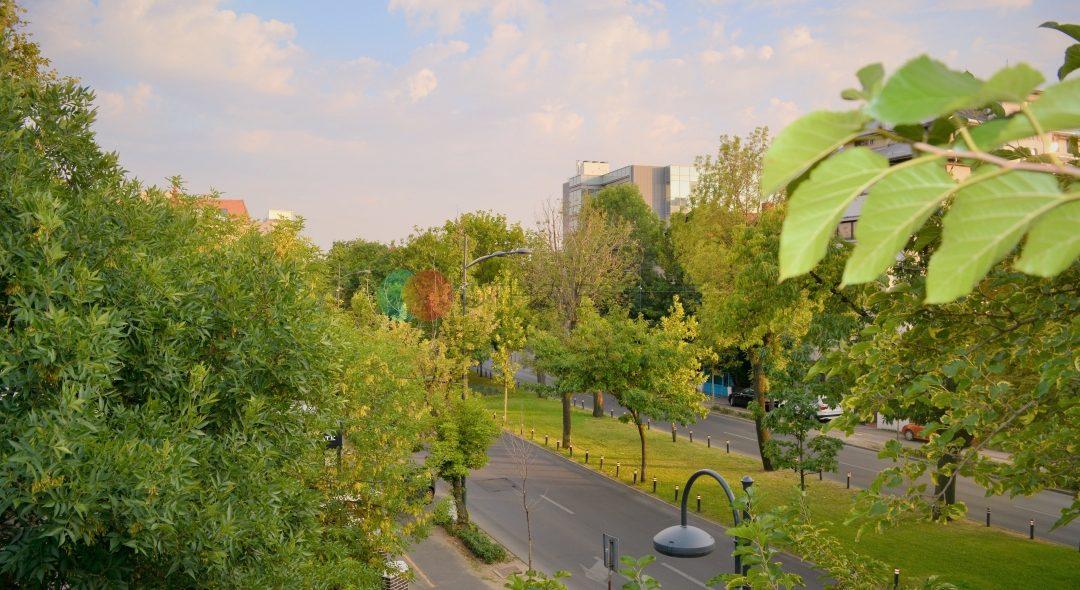 Dorobanti | Beller |Etajul 2 | Vedere spectaculoasa | Mobilat |Zona Excelenta main picture